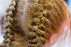 Hairdresser makes braids Stock Photo