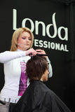 Hairdresser makes hairstyle at master class Stock Photography