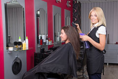 Hairdresser makes hairstyle for young attractive girl Stock Photo