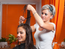 Hairdresser making hair of beautiful happy woman Royalty Free Stock Photography