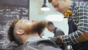 Hairdresser for men. Barbershop. Caring for the beard. A hairdresser with a haircut works over the beard and mustache of stock video footage