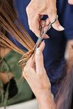 Hairdresser's Hand Cutting Hair Of Client Stock Images
