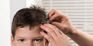 The hairdressers hands are combing the boy`s wet hair before cutting, close-ups. The hairdresser`s hands are combing the boy`s wet hair before cutting, close-ups royalty free stock images