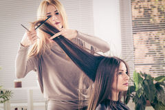 At The Hairdresser's Royalty Free Stock Photos