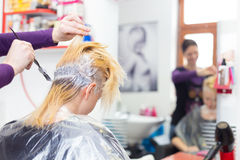 Hairdresser salon. Woman during hair dye. Hairdresser salon. Hair colouring in process. Beautiful young women dyeing hairs Royalty Free Stock Images