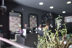 Hairdresser saloon background real business . Defocus image Royalty Free Stock Photos