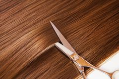 Hairdresser scissors on the hair Royalty Free Stock Images