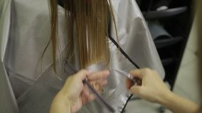 Hairdresser shortening hair tips with scissors stock video