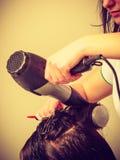 Hairdresser styling woman dark long hair Royalty Free Stock Image