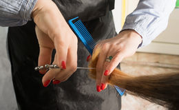 Hairdresser trimming ombre hair with scissors Stock Image