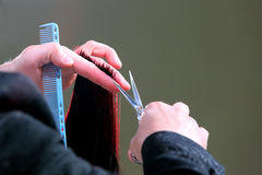 Hairdresser trimming red hair with scissors Stock Images