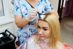 The hairdresser uses a brush to apply the dye to the hair, for d. Yeing Royalty Free Stock Photography