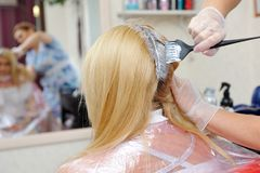 The hairdresser uses a brush to apply the dye to the hair, for d. Yeing Royalty Free Stock Image