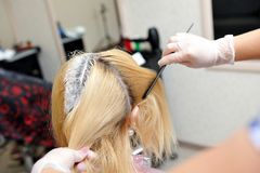 The hairdresser uses a brush to apply the dye to the hair, for d. Yeing Stock Photo