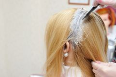 The hairdresser uses a brush to apply the dye to the hair, for d. Yeing Royalty Free Stock Photo