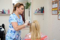 The hairdresser uses a brush to apply the dye to the hair, for d. Yeing Royalty Free Stock Photos
