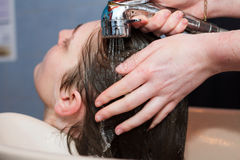Hairdresser washing female client`s wet hair Royalty Free Stock Photos