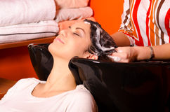 Hairdresser washing hair of beautiful girl Stock Image