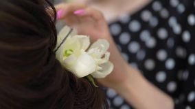 Hairdresser and woman. Hairdresser and young woman model, fixing flower in hair stock footage