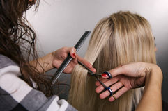 Hairdresser at work stock photo