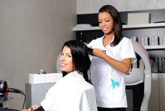 Hairdresser at work Stock Photography