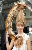 hairdresses конкуренции Стоковые Изображения RF