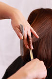 hairdressing Στοκ φωτογραφία με δικαίωμα ελεύθερης χρήσης