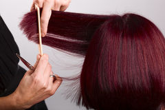 Hairdressing Royalty Free Stock Images