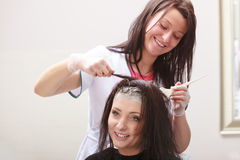 Hairdressing beauty salon. Woman dying hair. Hairstyle. Stock Photo