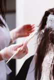 Hairdressing beauty salon. Woman dying hair. Hairstyle. Stock Photos