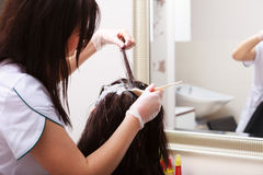 Hairdressing beauty salon. Woman dying hair. Hairstyle. stock image