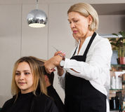 Hairdressing saloon. Woman in a black apron parkmaher cuts a young women at the hairdresser salon royalty free stock images