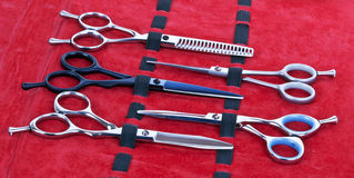 Hairdressing scissors Stock Photos