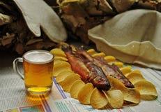 Hairdryer - cerveja, peixe, microplaquetas Fotografia de Stock
