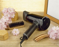 Hairdryer e flores Fotos de Stock Royalty Free