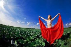 haired röd solroskvinna Royaltyfri Foto