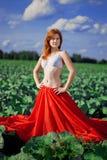 haired röd solroskvinna Royaltyfria Bilder