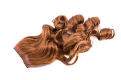 Hairpiece. Brown hairpiece isolated on white background Stock Images