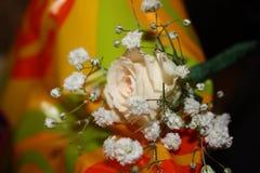 Hairpin νύφη Στοκ φωτογραφίες με δικαίωμα ελεύθερης χρήσης