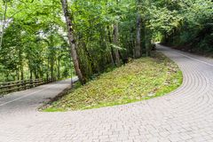 Only hairpin in Baltics, Gauja National Park, Latv. Ia stock photos
