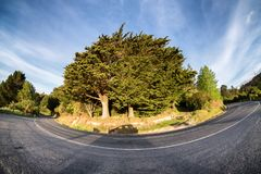 A hairpin turn on the mountain roads in the country side of New Zealand. The bend is exaggerated because it was shot using fish eye lens. New Zealand is a stock images