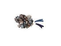 hairpins Стоковое фото RF