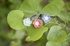 Hairpins na drzewie Zdjęcie Royalty Free