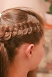 Hairs Royalty Free Stock Photos