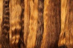 Hairs. Image of womanish light hairs Royalty Free Stock Photo