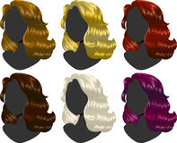 Hairs colors. Six sample of hair colors isolated on white Stock Photography