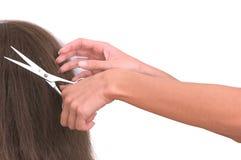 hairstyle στοκ φωτογραφίες με δικαίωμα ελεύθερης χρήσης