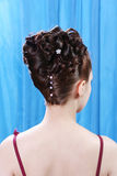 Hairstyle. The rear view on a creative hairdress Royalty Free Stock Photo