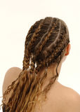 Hairstyle. Back view of a girl to show hair Royalty Free Stock Image