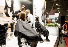 Hairstyle Stock Photos